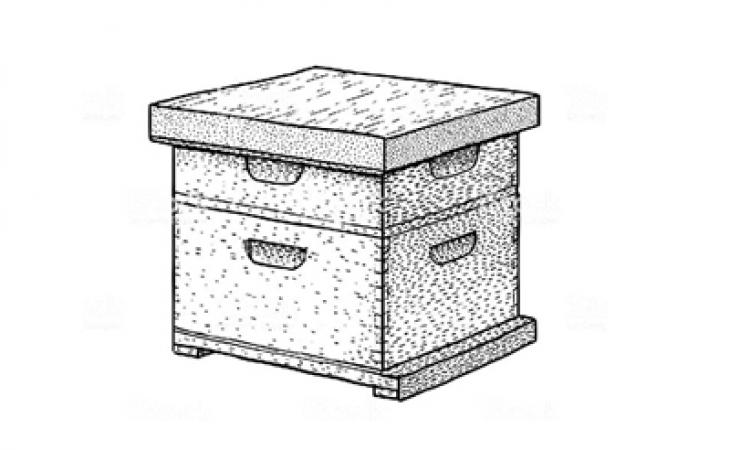 Thùng nuôi ong mật