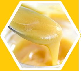 Sửa ong chúa & Công dụng